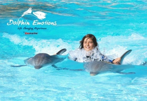 Dolphin Emotions at Zoomarine