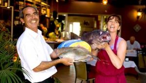 O Barradas Restaurant