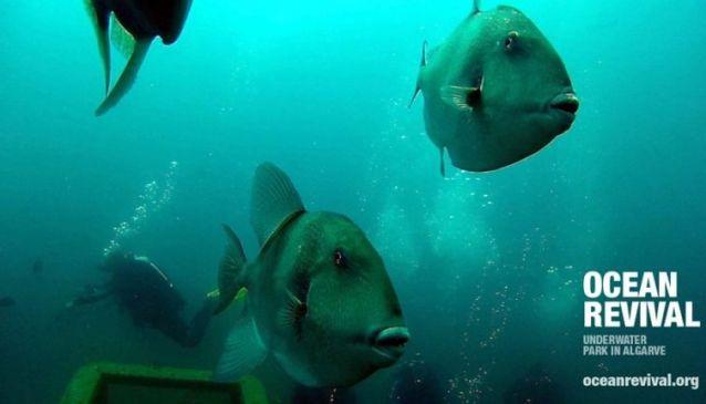 Ocean Revival Underwater Park