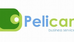 Pelican Business Services