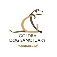 Goldra Dog Sanctuary Charity Lunch