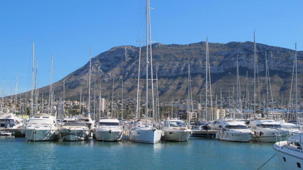 Denia marina, Alicante