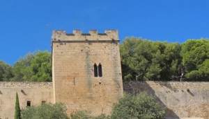 Who ruled Denia castle?