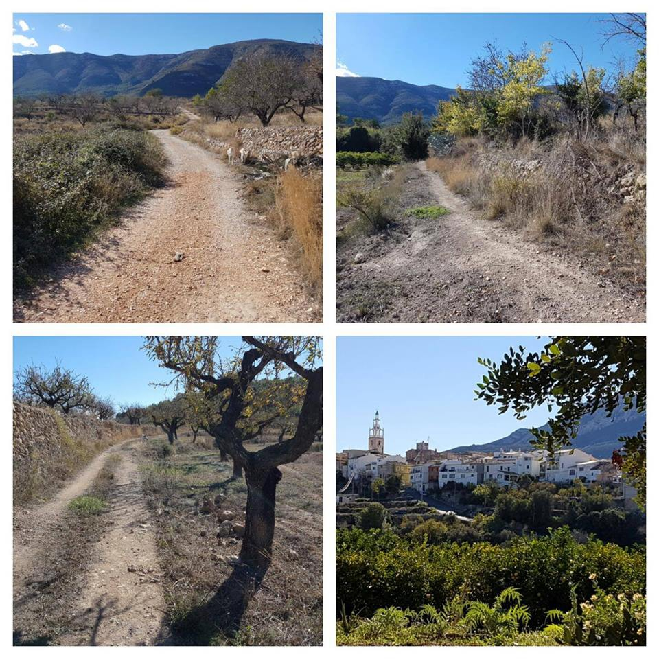 Walk with ProAnimal Denia from Alcalalí to Murla