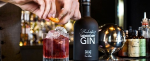 Gin Masterclass with Jamie Baxter of Burleighs Gin