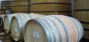 Wine barrels at Bodega Xalo, Jalon