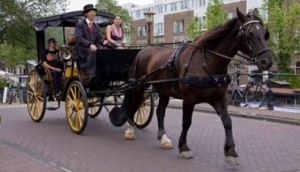 Amsterdam Carriages