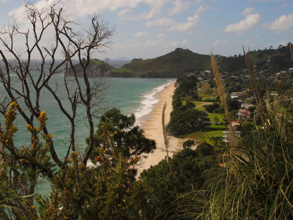 Hahei Beach, The Coromandel