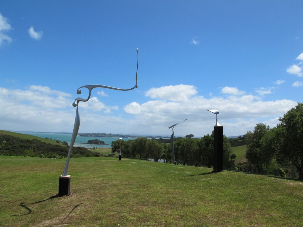 Waiheke Island Vineyard View