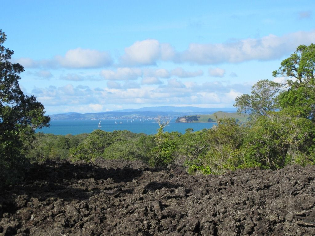 Rangitoto Island View