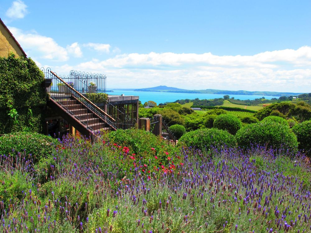 Mudbrick Vineyard