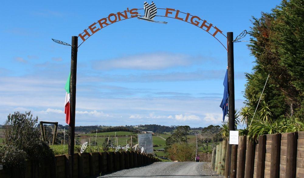 Herons Flight