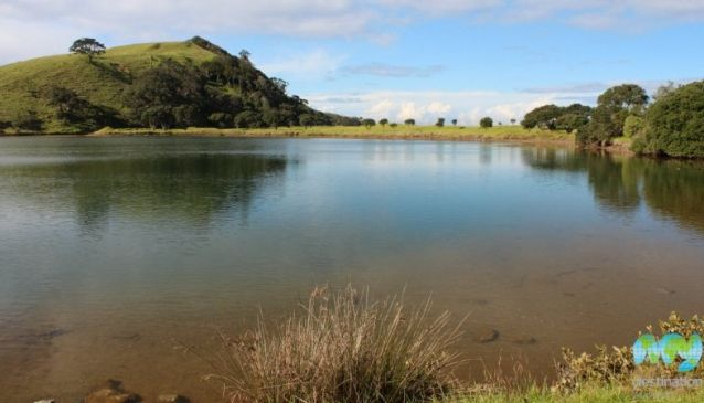 Top 10 Auckland Parks