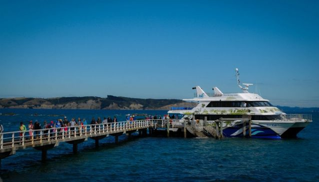 360 Discovery Cruises