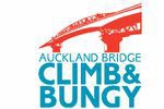 Auckland Bridge Climb and Bungy