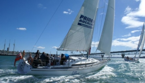 Harbour Sailing & Dinner Cruises