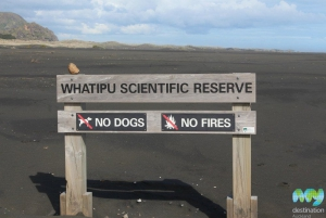 Whatipu Scientific Reserve