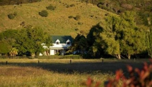 Jacaranda Lodge Bed & Breakfast Coromandel