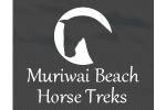 Muriwai Beach Horse Treks