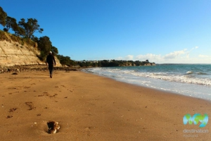 Narrow Neck Beach