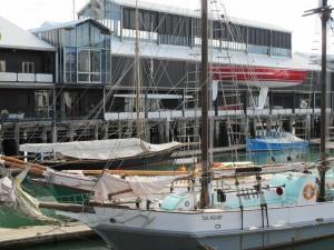 New Zealand Maritime Museum - Sailing Trips
