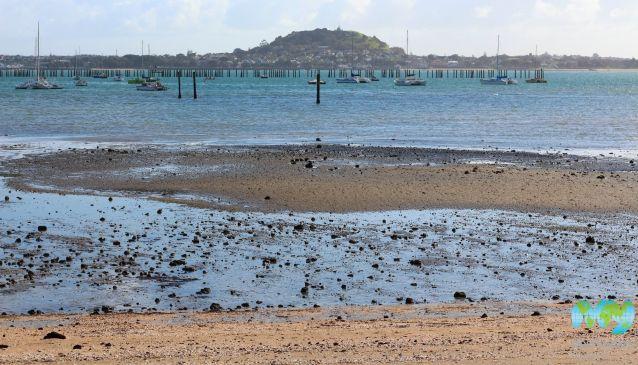 Okahu Bay