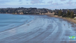 Best Beaches in Auckland