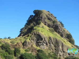 Piha Beach, Lion Rock