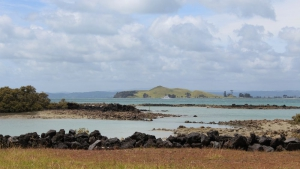 View from the base of Rangitoto Island