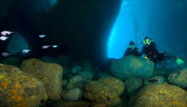 Tairua Dive & Fishinn