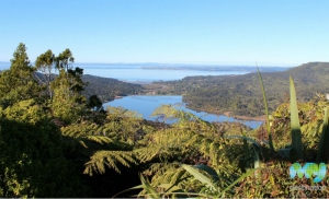 View from Arataki Visitor Centre Lookout