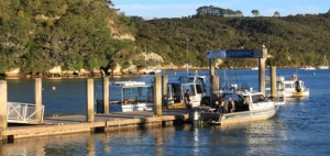Whitianga Wharf