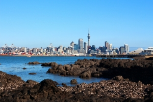 Auckland View From Devonport