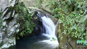 Fairy Falls, Waitakere Ranges