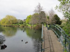 Western Springs - Lakeside Park, Auckland