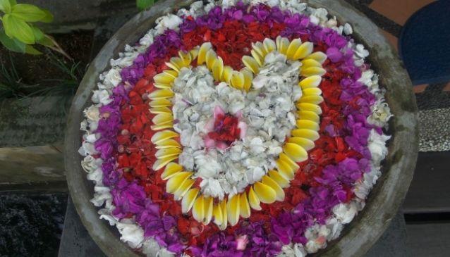 My Bali Holiday