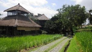 Bali: Top 5