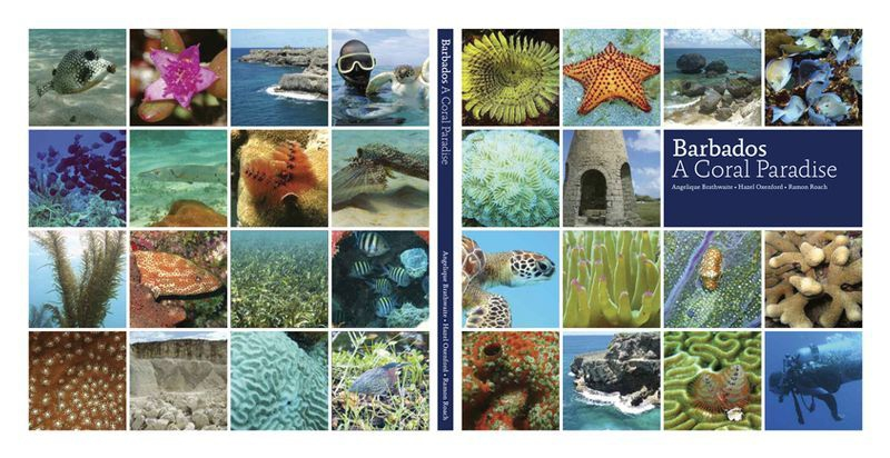 Back & front covers of Barbados, A Coral Paradise