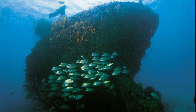 Shipwrecks of Barbados