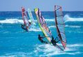 Windsurfers all in a row (Credit: Chris Welch for Brian Talma)