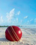 Cricket reigns supreme as king of local sports