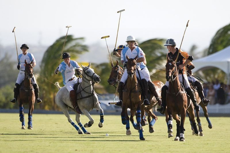 Polo at Apes Hill Club