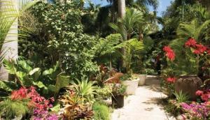Hunte's Gardens, St. Joseph