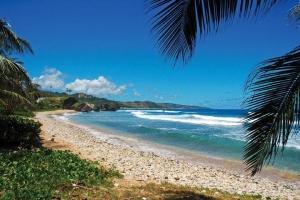 Discover Bathsheba beach, East Coast