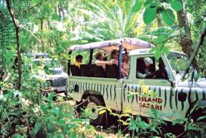 Enjoy an exciting Island Safari adventure