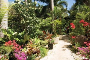 Hunte's Gardens, a horticularist's dream