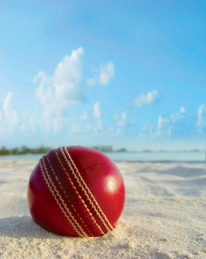 Watch a cricket match while you're here!
