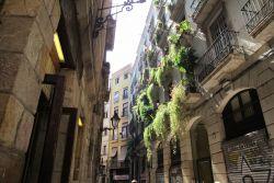 Barcelona Districts, Old City - El Gòtic