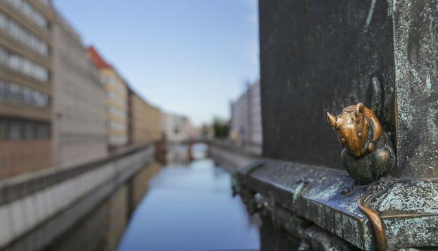 Berlin's Hidden Pockets