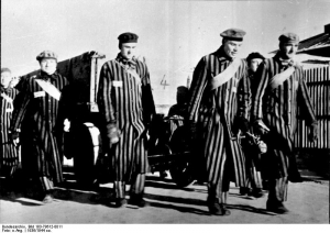 Prisoners at Sachsenhausen Concentration Camp pulling a wagon 1936. Image courtesy of the Bundesarchiv, Bild 183-78612-0011 / CC-BY-SA